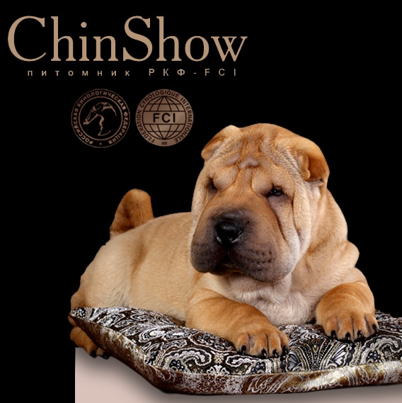 CHINSHOW